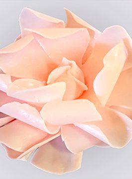 Cherry Blossom Tea Rose