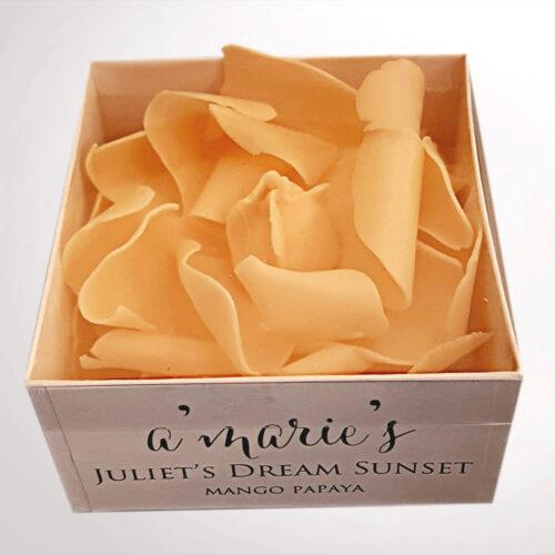 Juliet's Dream tea Rose in Box