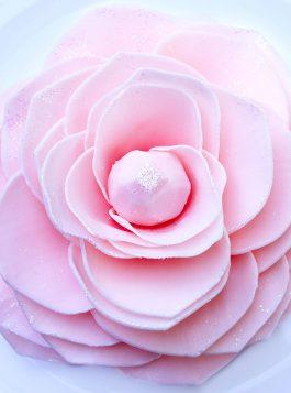 Pink Diamond Magnolia (Special Order)